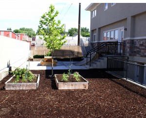 Residential treatment garden